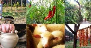 Şehir Hayatına Dönmek İstemeyeceğiniz 10 Ekolojik Tatil Yeri