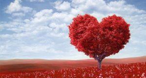 Sevgililer Gününde Yapabileceğiniz 10 Etkinlik