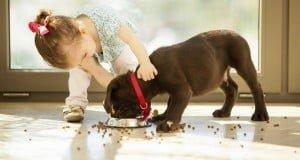 Evcil Hayvanların Çocuklar Üzerindeki Etkileri
